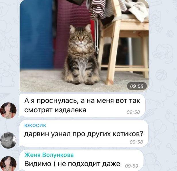 часть8_1_дарвин