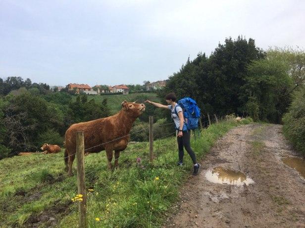 часть8_3_женька и корова_юка