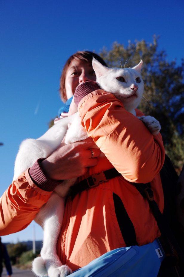 часть8_9_белая кошка